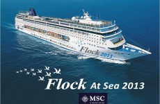 Flock_at_Sea_2013