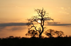 IMG_6053-sunset-KNP