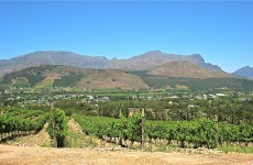 franschoek 4